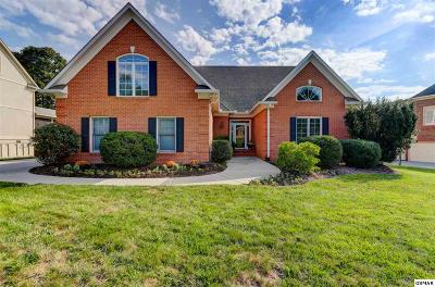 Knoxville Single Family Home For Sale: 1051 Hamilton Ridge Ln