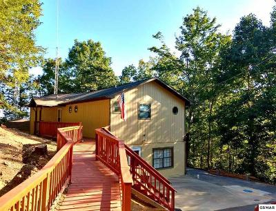 Pigeon Forge Single Family Home For Sale: 742 Lloyd Huskey Road