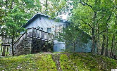 Sevierville Single Family Home For Sale: 3740 Ivy Way
