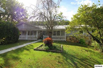 Sevierville Single Family Home For Sale: 1822 New Era Rd