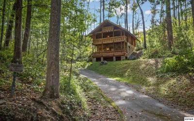Gatlinburg TN Single Family Home For Sale: $219,900