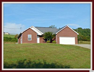 Talbott Single Family Home For Sale: 2529 Kaley Dr.
