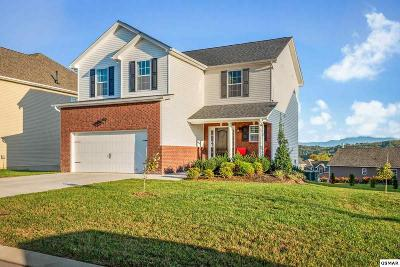Sevierville Single Family Home For Sale: 2835 Southwinds Cir