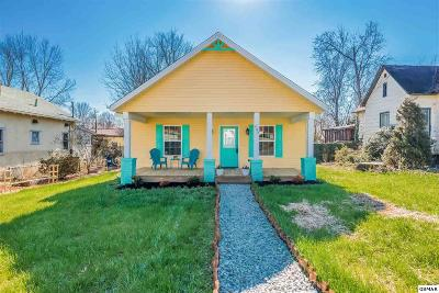 Knoxville Single Family Home For Sale: 808 Maynard Ave
