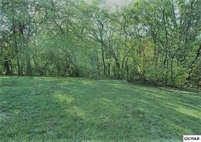 Kodak Residential Lots & Land For Sale: Tr1 25+/- Ac Thorngrove Pike