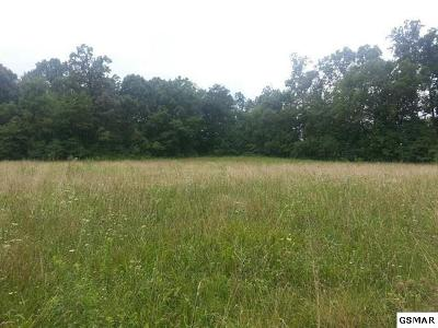 Kodak Residential Lots & Land For Sale: 52+/- Acres Thorngrove Pike