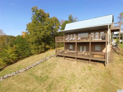 Sevierville Single Family Home For Sale: 702 Chris Way