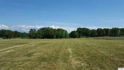 Loudon County Residential Lots & Land For Sale: 6241 Morganton Rd