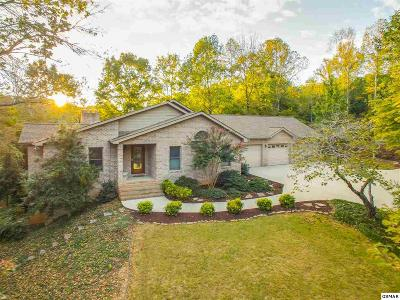 Knoxville Single Family Home For Sale: 3223 Sunny Cove Way