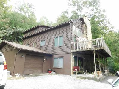 Sevierville TN Single Family Home For Sale: $288,500