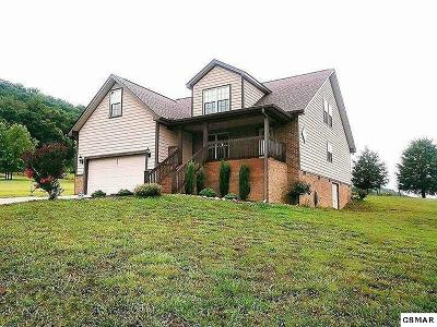 Seymour Single Family Home For Sale: 920 Bobbie Jean Ln