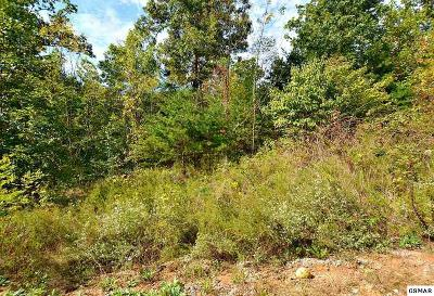 Sevier County Residential Lots & Land For Sale: Lot 125 Brook View Trail