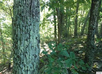 Sevier County Residential Lots & Land For Sale: Lot 34 Black Oak Dr