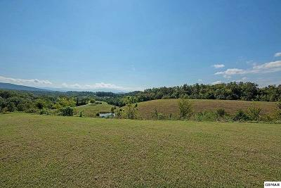 Sevierville Farm & Ranch For Sale: 3050 Lot 2 Sims Road