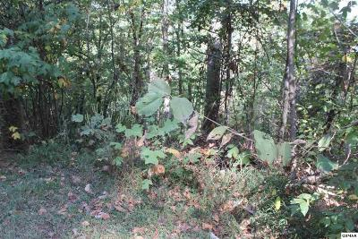 Sevier County Residential Lots & Land For Sale: Wilderness Mountain Rd