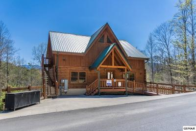 Pigeon Forge Single Family Home For Sale: 4319 Forest Ridge Way