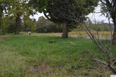 Seymour Farm & Ranch For Sale: 1566 Boyds Creek Hwy