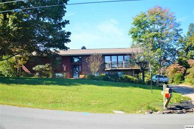 Seymour Single Family Home For Sale: 229 Seymour Heights Rd