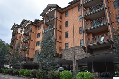 Gatlinburg Condo/Townhouse For Sale: 215 Woliss Lane