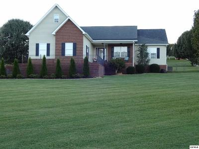 Sevierville Single Family Home For Sale: 2129 Bradley Ln
