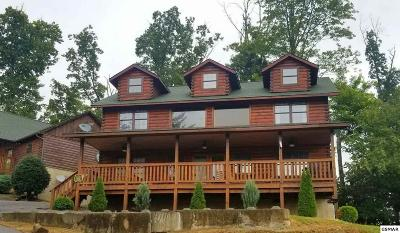 Sevierville Single Family Home For Sale: 1523 Boo Boo Way