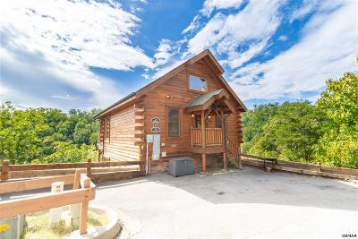 Sevierville Single Family Home For Sale: 3069 Legacy Vista Dr