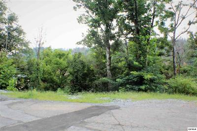 Residential Lots & Land For Sale: Lot 1 Sleepy Hollow Rd