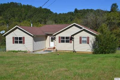 Sevierville Single Family Home For Sale: 3309 Oma Lee Drive