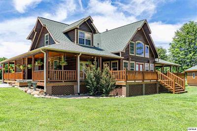Sevierville Single Family Home For Sale: 3351 Cove Meadows Dr