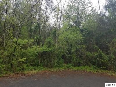 Pigeon Forge Residential Lots & Land For Sale: 53 Chickasaw Gap
