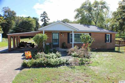 Knoxville Single Family Home For Sale: 222 W Marine Rd