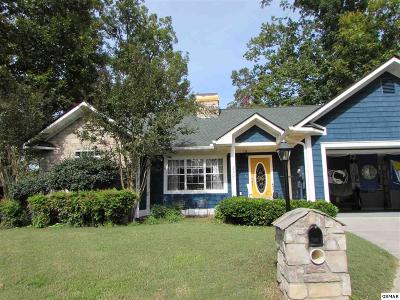 Sevierville Single Family Home For Sale: 317 Saddleback Way
