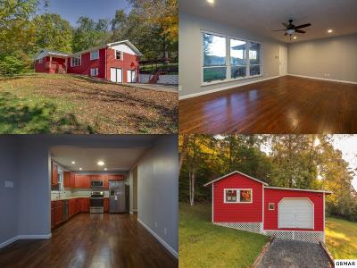 Knoxville Single Family Home For Sale: 8605 Kodak Road