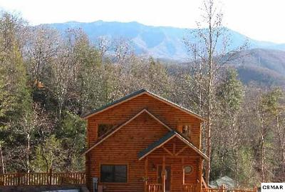 Gatlinburg Single Family Home For Sale: 727 Mountain Stream Way