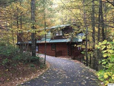 Sevier County Single Family Home For Sale: 3044 Brothers Way