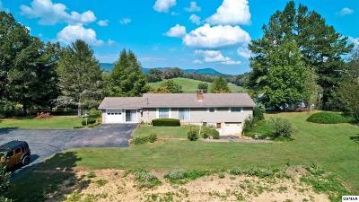 Cocke County Single Family Home For Sale: 2818 Eugene Rd