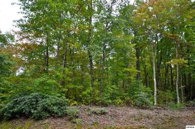 Friendsville, Greenback, Louisville, Maryville, Sevierville, Tallassee, Townsend, Townsend/walland, Vonore, Walland Residential Lots & Land For Sale: Little Round Top Ln