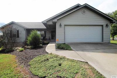 Sevier County Single Family Home For Sale: 511 Golden Harvest Cir