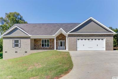 Sevier County Single Family Home For Sale: 269 Mississippi Ave