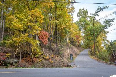 Sevier County Residential Lots & Land For Sale: Lot 1, Block 6 Upper Alpine