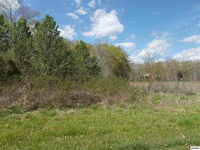White Pine Residential Lots & Land For Sale: Parcel 037 McCorkle Road