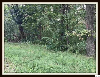 Pigeon Forge Residential Lots & Land For Sale: Lot 43 Progress Hill Blvd