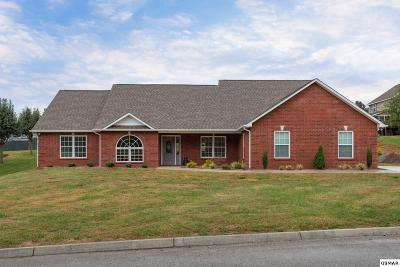 Sevierville Single Family Home For Sale: 2169 Summerfield Ln