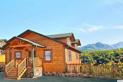Gatlinburg Single Family Home For Sale: 656 Park Vista Way