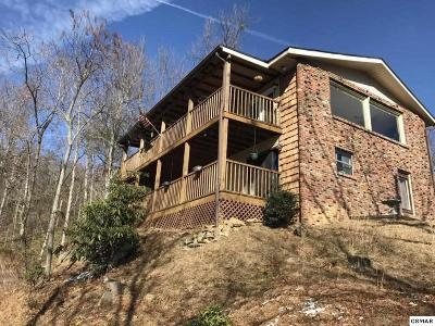 Gatlinburg TN Single Family Home For Sale: $204,000
