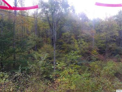 Residential Lots & Land For Sale: E Ball Hollow
