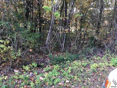 Jefferson County Residential Lots & Land For Sale: 1014 Mountain View Lane