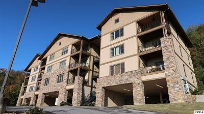 Sevierville Condo/Townhouse For Sale: 224 Maggie Mack