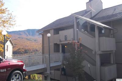 Gatlinburg Condo/Townhouse For Sale: 3710 Weber Rd D102