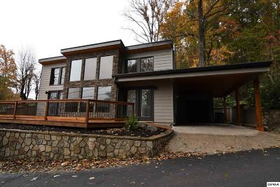 Sevier County Single Family Home For Sale: 514 Ski Mountain Rd